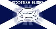 Scottish Elises